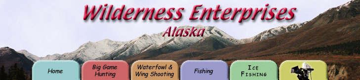 wilderness enterprises - alaska - big game hunting, waterfowl and wing shooting, fishing, adventure travel, alaska wilderness film
